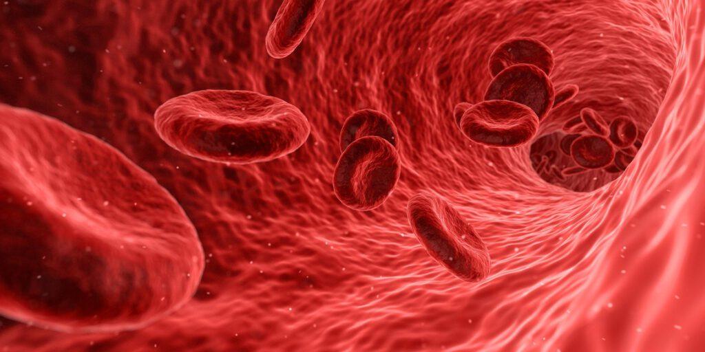 La importància de l'osmosi a la sang és vital pel nostre funcionament. Si vols saber més, entra a la nostra web.