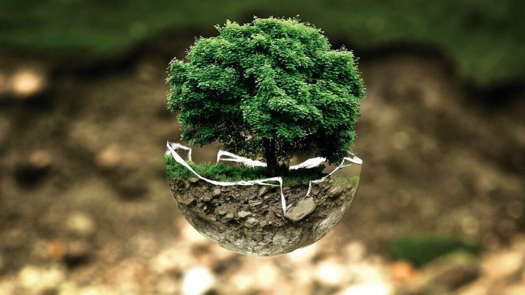 Si vols saber què és un producte ecològic, visita la nostra web i esbrina-ho tot sobre ells.