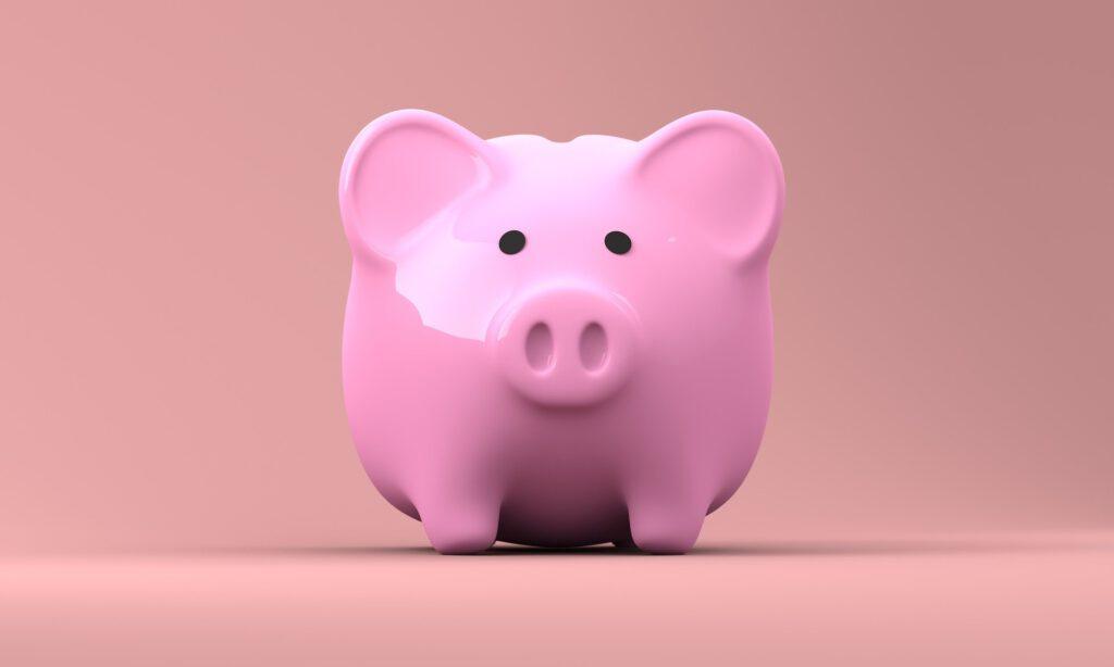 Amb Cleozone l'estalvi econòmic està garantit