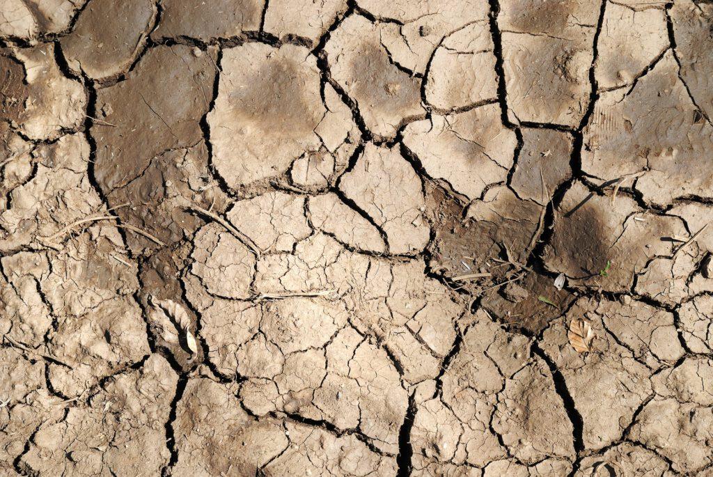Amb les 5 bones pràctiques amb l'aigua volem evitar la desertificació de la terra.